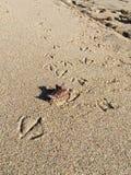 Sand/gestempeltes /step Lizenzfreie Stockbilder