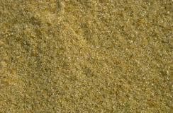 Sand grain Stock Images