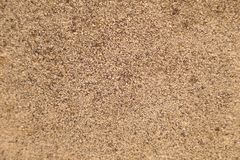Granular sand texture royalty free stock images