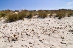 Sand, Gras und ein blauer Himmel, Mittelmeer Stockfotografie