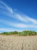 Sand, Grass, and Clouds. Grass on a sandy beach, underneath a vibrant blue sky Stock Photography