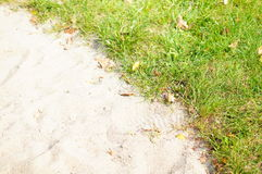 Sand and grass Royalty Free Stock Images