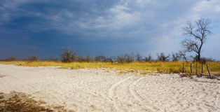 Sand and grass steppe on a background of a stormy sky Stock Image