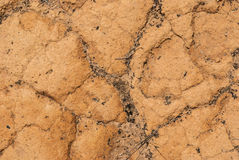 Sand ground textured. Royalty Free Stock Image