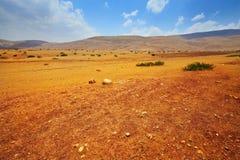 Sand-Hügel Stockfotos