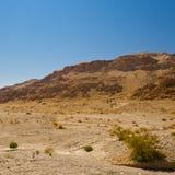 Sand-Hügel Stockfoto