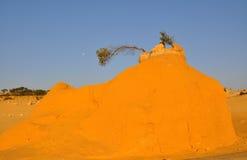 Sand-Hügel mit Mond in der Berggipfel-Wüste: West-Australien Lizenzfreies Stockfoto