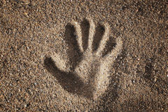 Sand Hand Stock Images