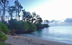 Sand, hav, himmel och träd fotografering för bildbyråer