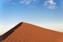 Sand hill in the Sahara desert Royalty Free Stock Images