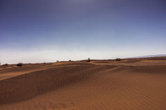 Sand hills in the Sahara desert Royalty Free Stock Photo