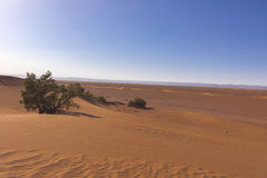 Sand hills in the Sahara desert Stock Photo
