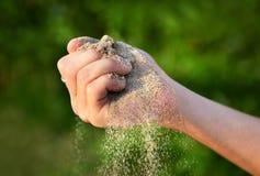Sand i handen Fotografering för Bildbyråer