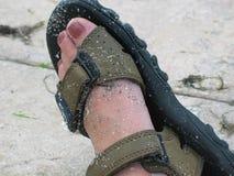 Sand i min sandals Arkivbild