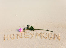On sand an inscription Honeymoon and a blossoming rose Royalty Free Stock Photography