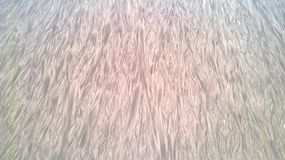Sand an Kribi-Strand Lizenzfreie Stockfotos