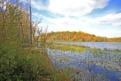 Sand lake in the fall. In chain o' lake state park, Indiana Stock Photography