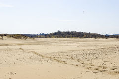 Sand landscape, National Park Zuid Kennemerland, The Netherlands Stock Photography