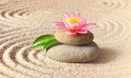 Sand, lily and spa stones in zen garden Royalty Free Stock Photos