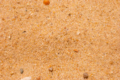 Sand macro texture. Royalty Free Stock Photo