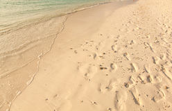 Sand in Maldives sunny beach water Royalty Free Stock Images