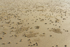 Sand Marking Stock Photo