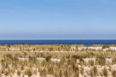 Sand and marram on the Dutch coast. Royalty Free Stock Image