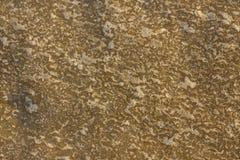 Sand med is royaltyfria bilder