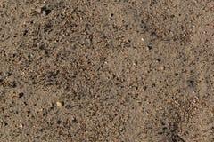 Sand med små stenar. Arkivfoto