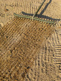 Sand mit einem Golfbunker harkend, schließen Sie Rührstange ein. Stockbild