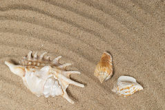 Sand mit Oberteilen lizenzfreie stockbilder