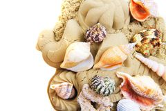 sand objects with sea shells isolated Royalty Free Stock Images