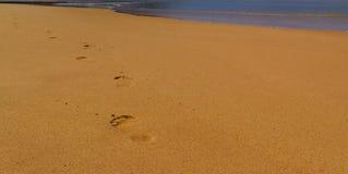 Sand och hav för fotsteg klar royaltyfri fotografi
