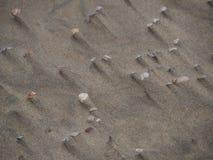Sand och hyllor Royaltyfri Bild