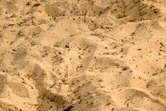 Sand och kiselstenbakgrund arkivbilder