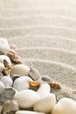 Sand och skal Arkivfoto