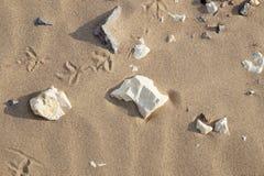 Sand och stenar på en strand Royaltyfri Bild