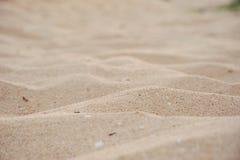 Sand på stranden Royaltyfri Fotografi