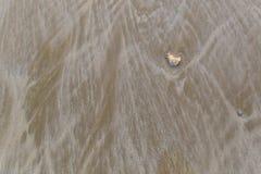 Sand på stranden Arkivbilder