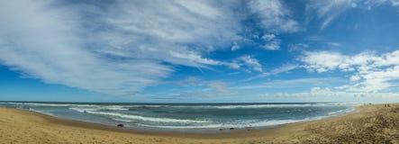 sand på stranden på Cape Cod arkivbild