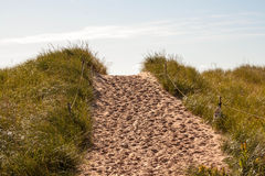 Sand path Royalty Free Stock Image