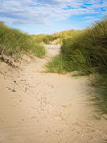 Sand path through dune grass Royalty Free Stock Images