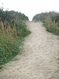 Sand path Stock Images