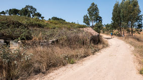 Sand path through forest. A sand pathway leading through a forest in Portugal Royalty Free Stock Photography