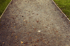Sand path with green grass Royalty Free Stock Photography
