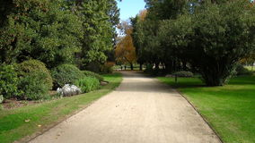 Sand path lined with trees. In Benalla Botanical Garden, Victoria, Australia Stock Photos
