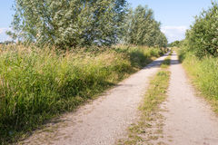 Sand path in a rural landscape Royalty Free Stock Images