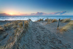 Sand path to North sea beach at sunset Royalty Free Stock Image