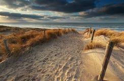 Sand path to North sea beach in sunshine Stock Photos
