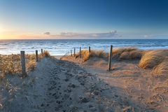 Sand path to North sea coast at sunset Stock Image
